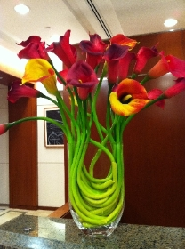 Calla Lily Corporate display