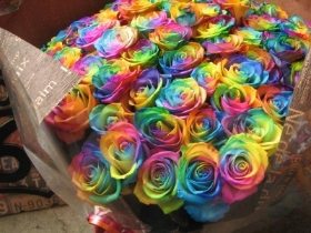 rainbow preserved rose hat box